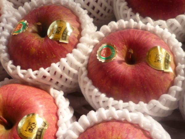 有機オーガニック リンゴ